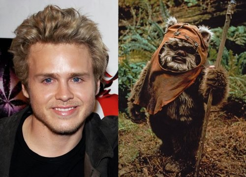 Spencer Pratt: actually an ewok