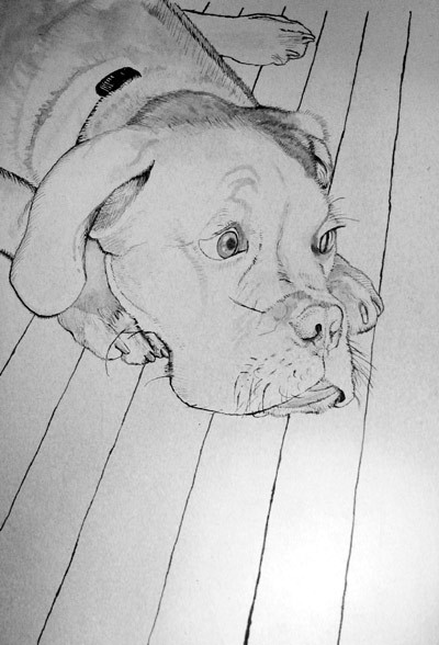 Sometimes I sink so low as to draw portraits of other people's pets. (CFB)