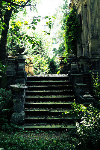 awesomespaces:  beautefragile:  A secret garden (via one more robot)
