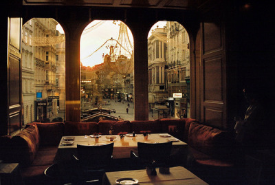 landscapelifescape:  togetlost:  travelhighlights:  A Restaurant View by Vanessa Arn Vienna, Austria    (via travelhighlights)