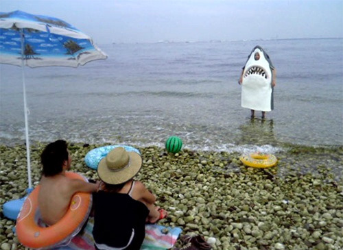 SHARK: Hey guys, come on in. The water's fine!  PEOPLE: Really? Okay that sounds gre… Hey! Wait a minute! You're trying to trick us.  SHARK: No, the semi diurnal lunar tidal cycle has created warm sea surface temperatures from the Mid-Atlantic Ridge and the daily solar cycle has made suitable hospitable conditions for a large variety of organisms, including plankton, seagrasses and shellfish!  PEOPLE: We just watched you eat a swimmer!  SHARK: Me? I wouldn't do that. I'm really nice when you get to know me.  PEOPLE: He was our friend!  SHARK: Maybe I can just nibble on your toes a little?