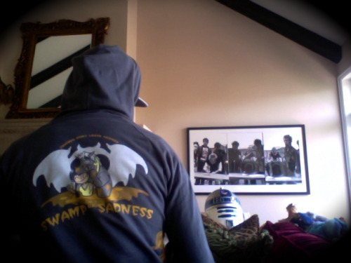 "back of the ""friends dont leave friends in the swamps of sadness"" hoody"