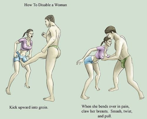 How to disable a woman or how to have a fun friday night.  You decide.