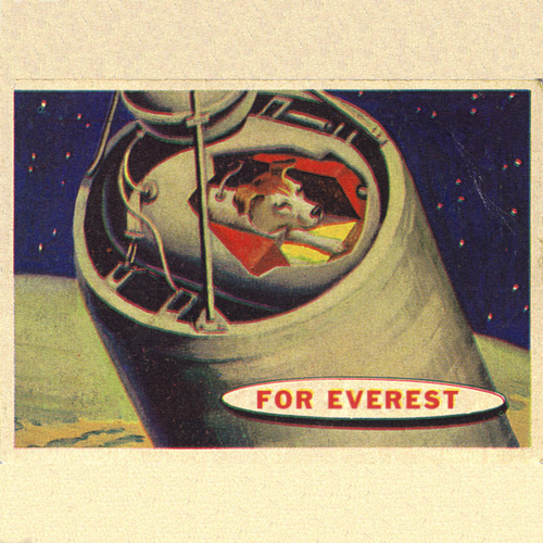 For Everest - Earheart