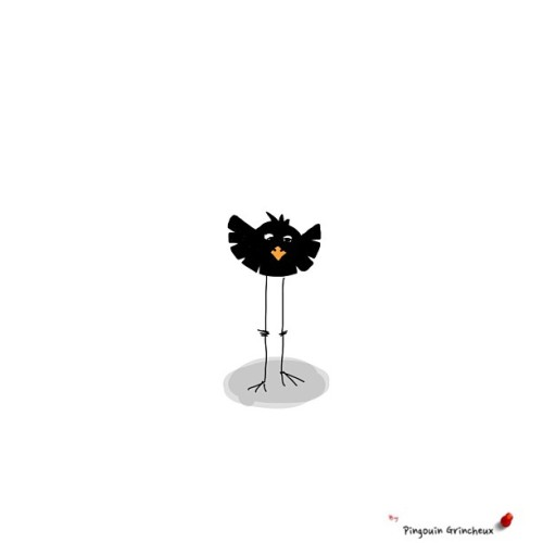 Blackbirds singing in the dead of night #miniature #pingouingrincheux