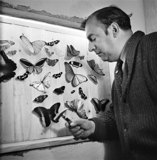 chagalov:  Pablo Neruda at home, Chili, 1944 -by Gisèle Freund  [+] from rmn