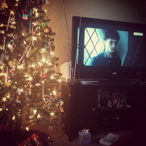 Spending Christmas with Harry😊 (at Gallifrey)