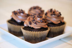 foodopia:  chocolate cupcakes: recipe here