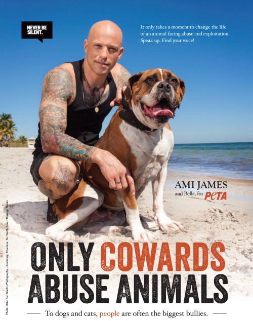 "When it comes to speaking up for animals, tattoo artist and star of NY Ink Ami James will ""never be silent."" Now Ami is teaming up with PETA again, with his adorable dog Bella with a message that's loud and clear: ""Only cowards abuse animals.""  READ MORE: http://peta.vg/16b"