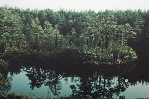 nostalgic-dreaming:  untitled by Dan_Sim on Flickr.
