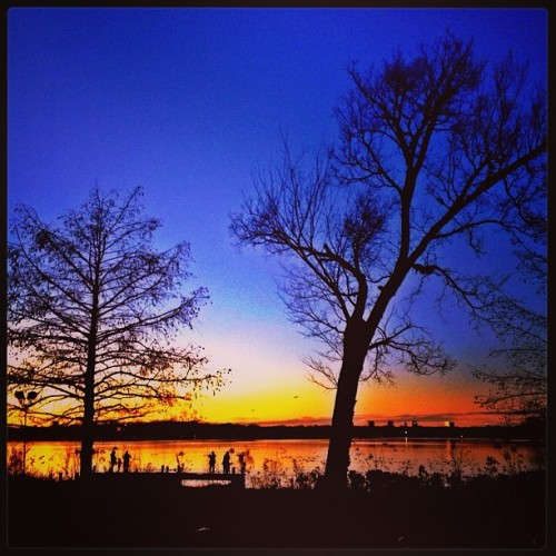 Sunset n watchers #sunset #whiterocklake #dallas #trees #silhoutte #people #nature #water. #lake #texas #iphone4s #iphonography #gorgeousview #watchers #orange #bluesky #photography #usa #birds #ducks