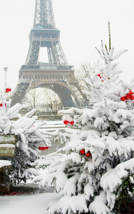 A winter wonderland in Paris.