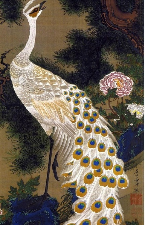 murdermetonymy:  la-pitonisa-tropical:  by Itō Jakuchū  celebrate all peacocks