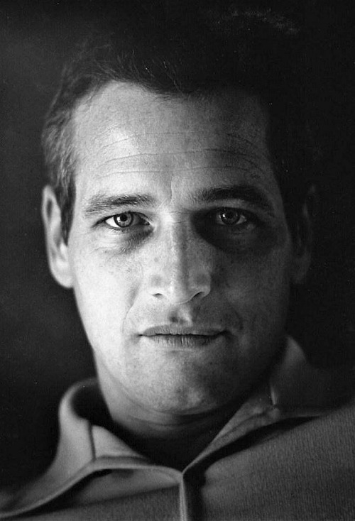 Paul Newman photographed by Roddy McDowall, 1965