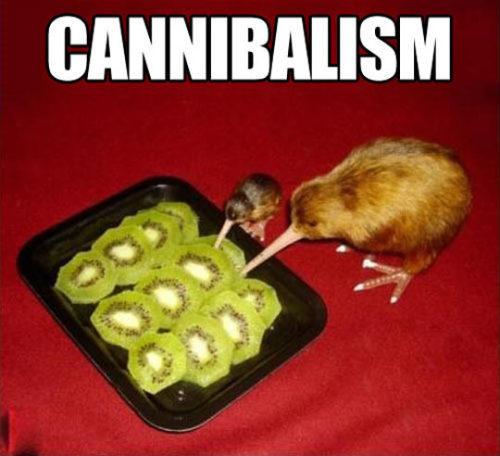 Funny Pics funny humor lol srsfunny wtf