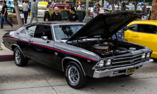 Total exposure Starring: '69 Chevrolet Chevelle SS (by SteveWillard)