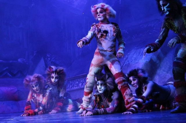 """Jenyanydots doing the Munkustance during""""Grizabella the Glamour Cat"""", Mexico 2018 #cats the musical #cats mexico#jenyanydots#pouncival#etcetera#mungojerrie#rumpleteazer#plato"""