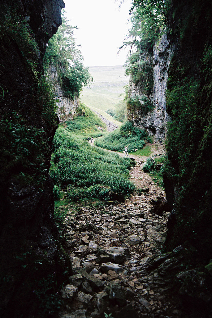 vacants:  Trow Gill (by Colin Paterson)