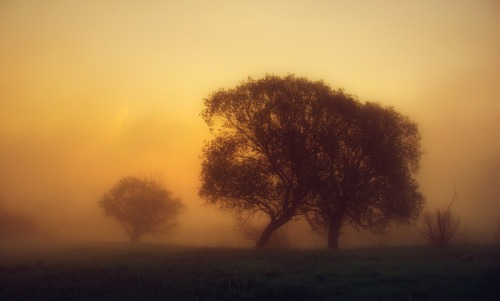 Morning glow by ~jeremi12