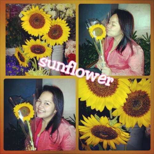 #Sunflower is soooo #Love ! Thank you .. Seeing this for real and holding it in my hands made me teary-eyed .. You never fail to make me smile ..