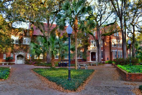 livinglifethroughthelens:  University of Florida Campus at sundown. Photos by Chris Bastian.