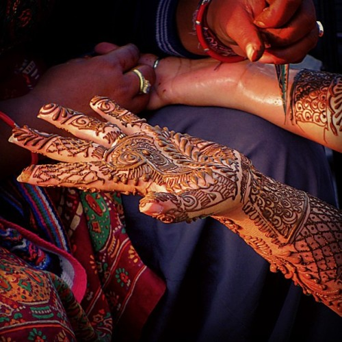 Henna Artist in New Delhi (2 hands and forearms takes about an hour to complete… The detail is spectacular!!!) - India
