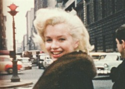 alwaysmarilynmonroe:  Marilyn by Peter Mangone in New York in 1955.