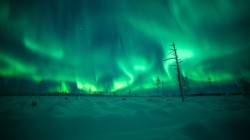 photorator:  Lapland in Finland lighted up by Aurora Borealis