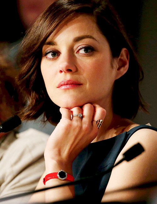 Marion Cotillard at the 'Blood Ties' press conference. Cannes Festival, May 20th, 2013.