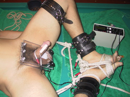 ropeguy62:Ball crushing and electro, just what a slave needs. ( Pic of MASTERS work )