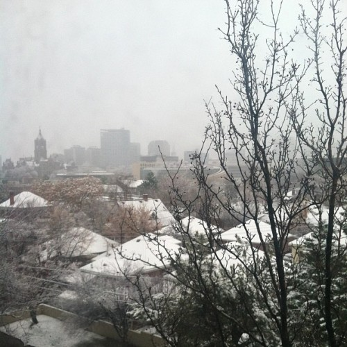 I love waking up to this. #snow #fog #slc #utah #saltlakecity