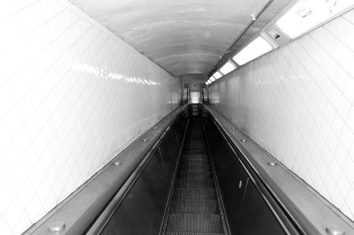 terrysdiary:  Escalator Down.  Down