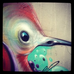 Painting at the walls #hasselt #graffiti#streetart#bird#art#amatic#philipbosmans#painting#still2coldifyouaskme#instagood