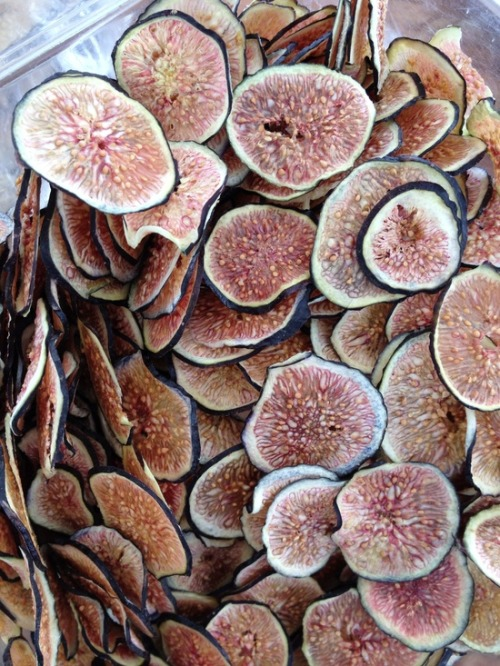 basilgenovese:  Fig Chips