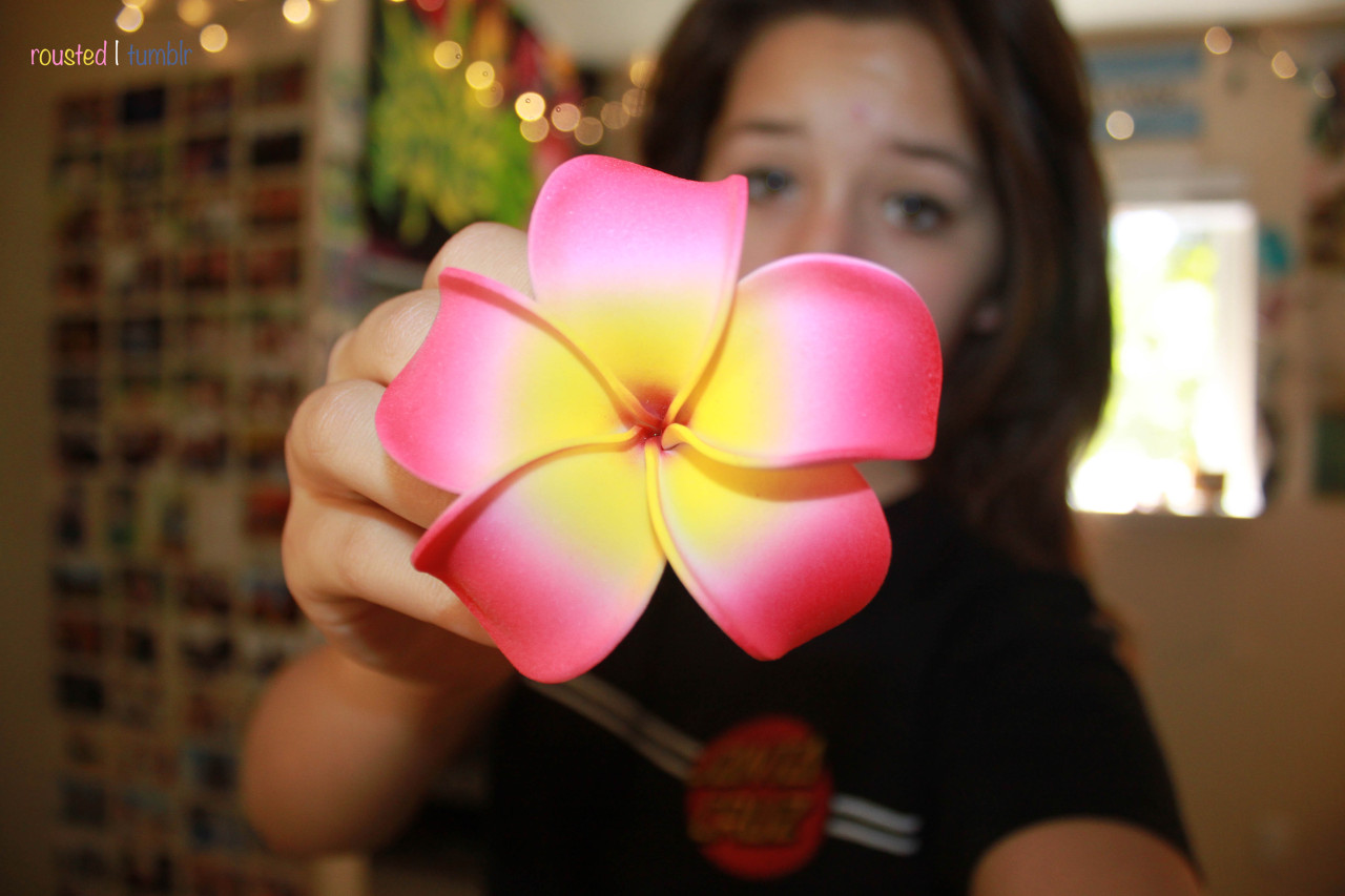 rousted:  One of my flowers I bought for Hawaii last year <3