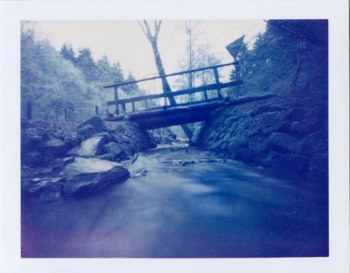 WWPD 2013  Polaroid Pinhole camera | Polaroid Blue film