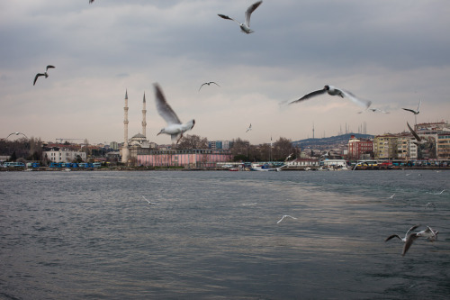 Gray day on the Bosphorus. Istanbul, Turkey.