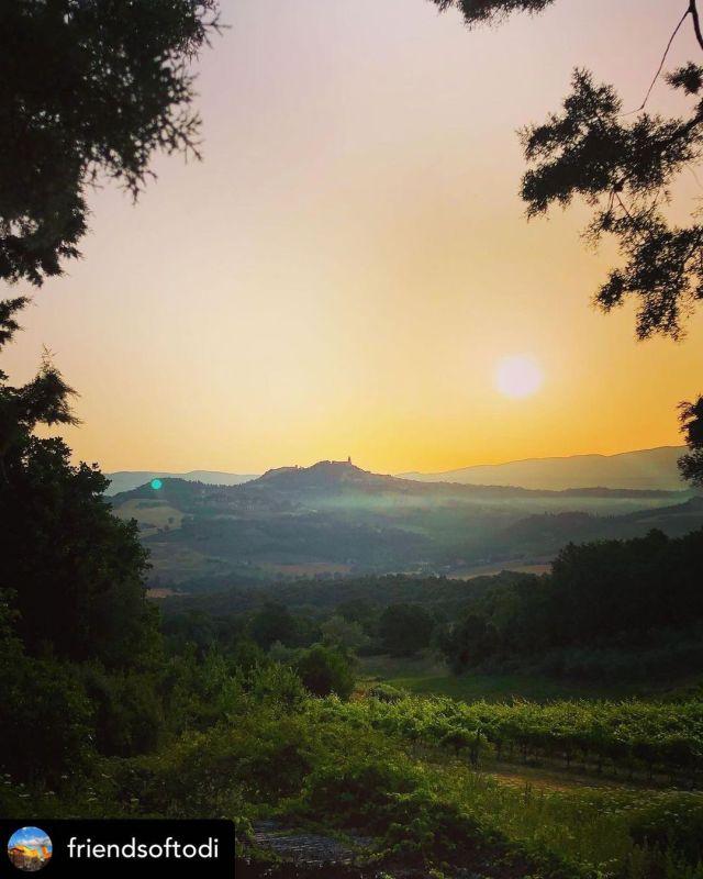 Posted @withregram • Grazie a @friendsoftodi per aver condiviso con noi questo suo splendido scatto di Todi, Umbria (central Italy). Il profilo di @friendsoftodi è una bellissima gallery fotografica che mette in grandissima evidenza la grande bellezza dell'Umbria, in particolare dell'area di Todi.   Buongiorno ☀️  - -  #todi #umbria #umbriaitaly #umbriacenter #visitumbria #vivoumbria #instagood #picoftheday #photooftheday #friendsoftodi #travelblogger #travelbloggers #landscape_specialist #landscapephotography #sunsetlovers #sunsetlover #all_sunsets #landscapelovers  (at Todi Umbria) https://www.instagram.com/p/CQ_xsrkNX9a/?utm_medium=tumblr #todi#umbria#umbriaitaly#umbriacenter#visitumbria#vivoumbria#instagood#picoftheday#photooftheday#friendsoftodi#travelblogger#travelbloggers#landscape_specialist#landscapephotography#sunsetlovers#sunsetlover#all_sunsets#landscapelovers