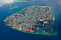 The Maldives. More photos.