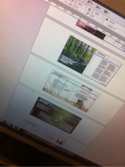 Have even doing a whole load of various design bits for the Nene Valley project over the last year or so. This stakeholder document is the biggest piece so far and have really enjoyed being able to stretch the concept a bit instead of having to find one image that says everything. Will share a link to the finished piece when it's done.