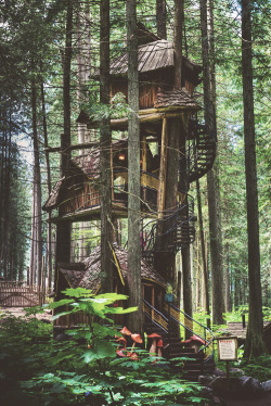 ommk:  thats what you call a treehouse