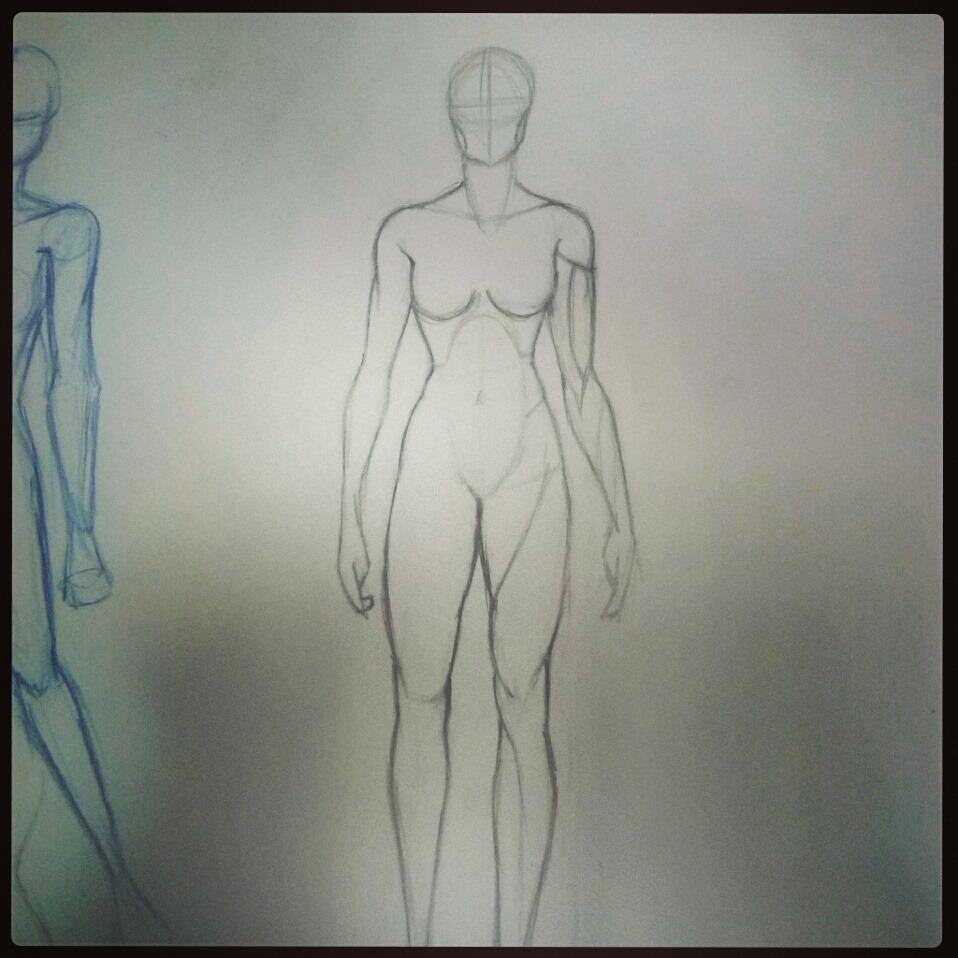More anatomy