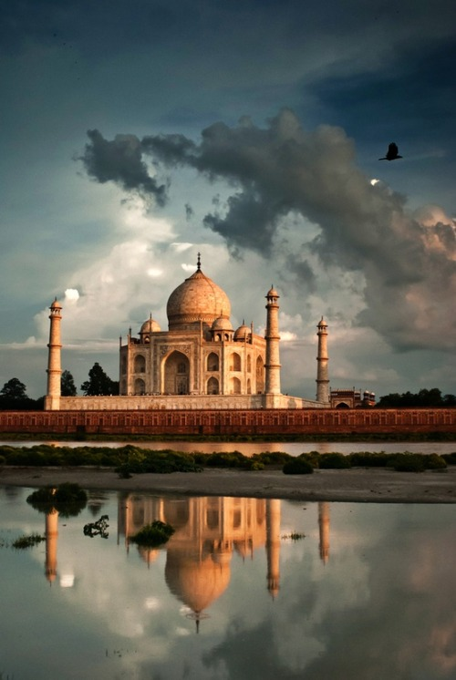 beautyartislam:  Taj Mahal. Agra, India.