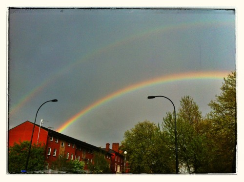 Double rainbow over New Kent Rd  Not nearly enough excitement over this from passers by. I wanted to grab their arms and say, Look, look! How can you not stop for a rainbow?