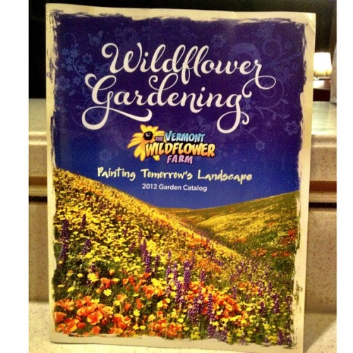 Wildflower Gardening.  #catalog #foodies #foodspotting #iphoneography  (at @drandall Green Thumb)
