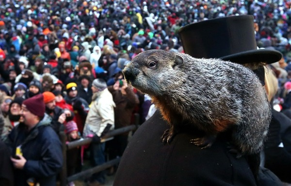 "nbcnews:  Prosecutor sees Punxsutawney Phil pushing daisies for forecast fraud (Photo: Alex Wong / Getty Images) An Ohio prosecutor says Punxsutawney Phil should be predicting the weather from six feet under. With tongue planted firmly in cheek, Michael Gmoser, the prosecuting attorney in Butler County, filed court papers this week indicting the world-famous groundhog for ""misrepresentation of early spring"" and announcing his intention to seek the death penalty. Read the complete story."
