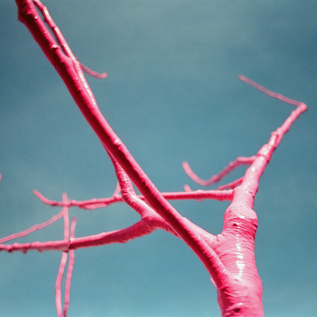 hchamp:  The pink tree in front of Biergarten on Octavia. Canon Elan 7NE.