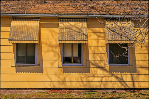 3X YELLOW on Flickr.3X YELLOW ~ Saint Joseph, Missouri USA ~ Copyright ©2013 Bob Travaglione. ALL RIGHTS RESERVED ~ www.JoeTown.Us ~ www.FoToEdge.com