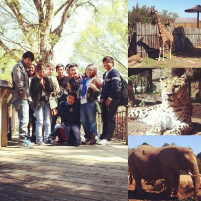 Road trip to Caldwell Zoo with the 2nd fam. #road #trip #caldwellzoo #animals #family #$H!FT #late #upload @kimreyes0420 @xjrhythm @romeeeoooo @ayyydamnits_kath @creyesification @bridgeoverocean @pbln_brye