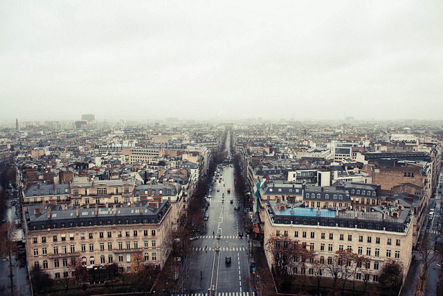 greekg0ds:  view from the arc de triomphe by animal at heart
